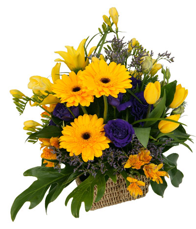 Brighten up someone's life with this stunning basket arrangement