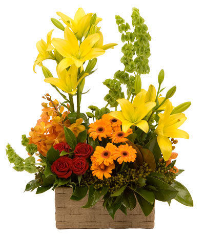 Colour my world - with a big, beautiful basket of flowers!