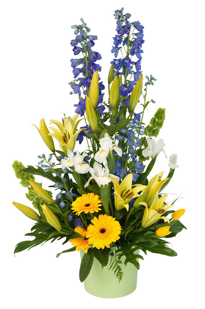 A beatiful, traditional pot arrangement perfect for any occasion!
