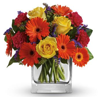 - Make a splash! Orange gerberas, yellow roses and hot pink carnations are a bold, beautiful gift for any happy occasion.