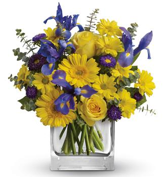 - As invigorating as a cool summer breeze, this amazing arrangement pairs eye-catching iris with golden gerberas and roses for a