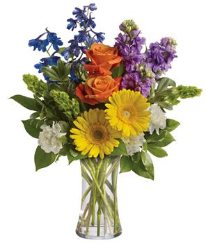 - Refresh the senses with the splendour of this colourful blend of gerberas, roses, stock, delphinium and Bells of Ireland in a