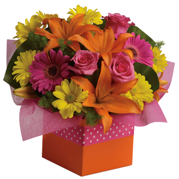 Joyful moments call for happy flowers! This box of blooms does the trick with orange lilies, pink roses, yellow daisies and hot