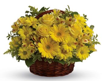 They'll be walking on sunshine after receiving this cheerful basket of roses, gerberas, alstroemeria and daisies!