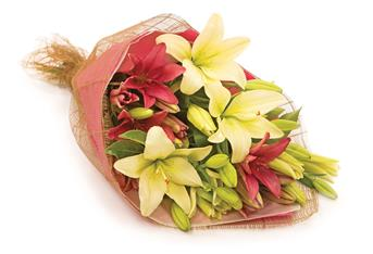 - An all-time devine favourite bouquet showcases a combination of long lasting coloured lilies..