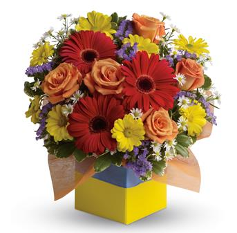 - You'll want to put this colourful arrangement on your hit parade of gifts to send. Bold primary colours and a perfect mix of f