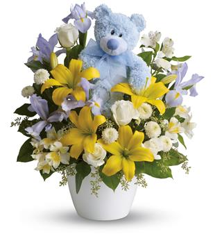 - This adorable arrangement will brighten any room with its beautiful blooms and soft blue bear. The perfect gift for a new baby