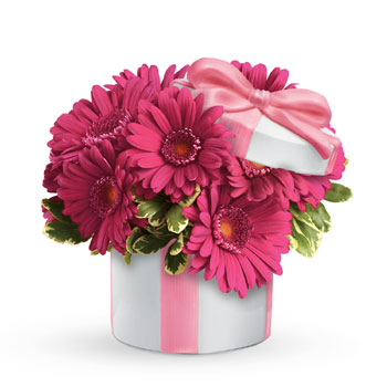 This arrangement of passionately pink gerberas in a Hats Off Keepsake vase gives tradition a twist and warms up any room.