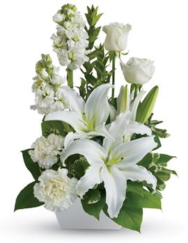 - If you want to send your warmest thoughts to show how much you care, this lovely arrangement with white carnations and lilies