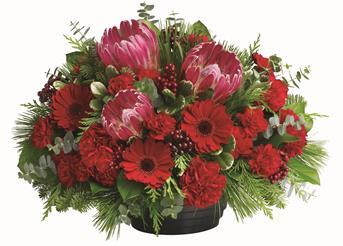 - Help set the mood and the table by sending this delightful Australian native arrangement. Perfect for any occasion.