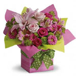 a blooming gift for a birthday or graduation, or a cheerful