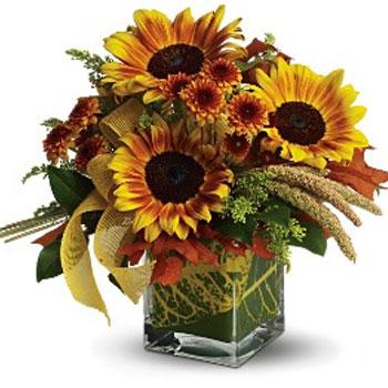 Fun Flowers - Hanford