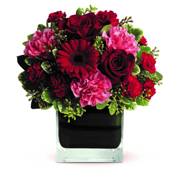 Whether you'd like to send a message of love to a favourite beau, best friend or family member, this charming arrangement - wiln