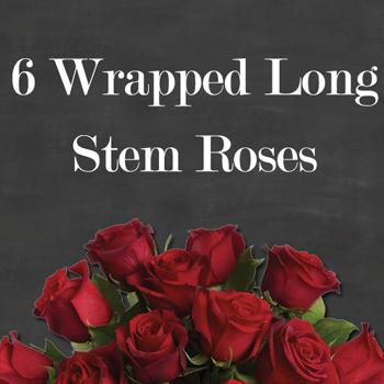 6 wrapped long stem roses
