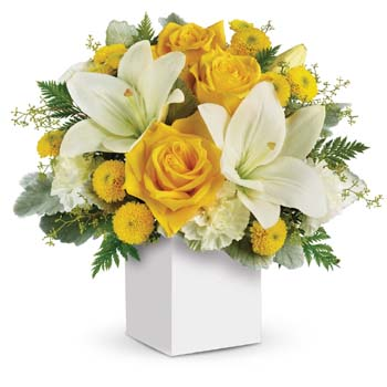 What a stylish way to make someone smile! Inspired by the sound of children's laughter, arrangement is sure to please