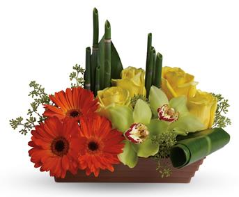 Capture the peaceful energy of the rising sun with this artful, Asian-inspired arrangement
