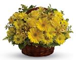They�ll be walking on sunshine after receiving this cheerful basket