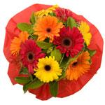Send Bouquets