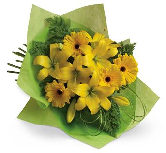 Pure sunshine! Send sunny thoughts to someone special with this bouquet of warm yellow lilies and bright gerberas.
