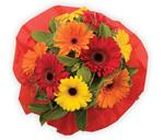 A bright and funky gerbera bouquet is a sure way to brighten