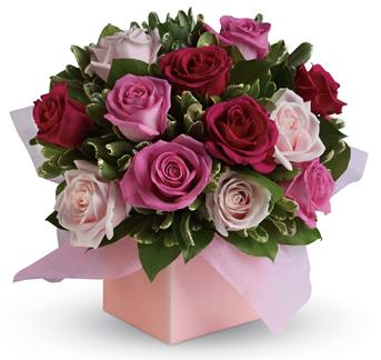 Sing her a love song - with roses. This lush red and pink rose arrangement tells her just how much you care.