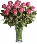 Perfect Pink Dozen - Rocherlea