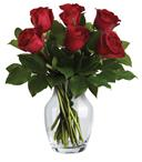 The red rose�s exquisite beauty is reason enough to make it the ideal choice