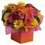Joyful moments call for happy flowers! This box of blooms does the trick