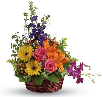 Celebrate their greatness with this glorious rainbow of lilies, roses, gerberas, orchids and delphinium!