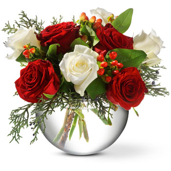 A mix of lush ruby and pure white roses, mingled with glossy red berries and greenery, create a classic Christmas arrangement. A