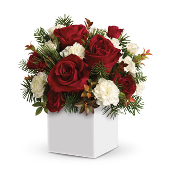 This Christmas, instead of sending a card to old friends, neighbours and others, send this charming box arrangement, filled with