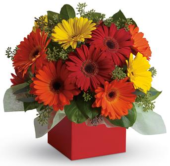 Brighten their day with this exuberant burst of beauty!