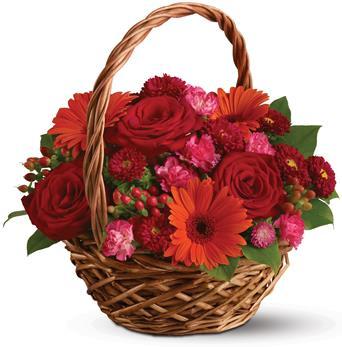 This basket a glorious, go-anywhere garden