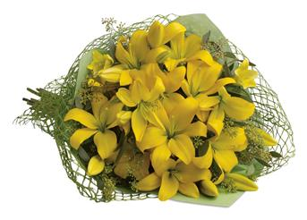 This glorious gathering of golden lilies is guaranteed to turn anyones day into a sunny one!