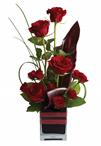 Roses, the traditional flower of love, receive a modern twist in this imaginative arrangement.